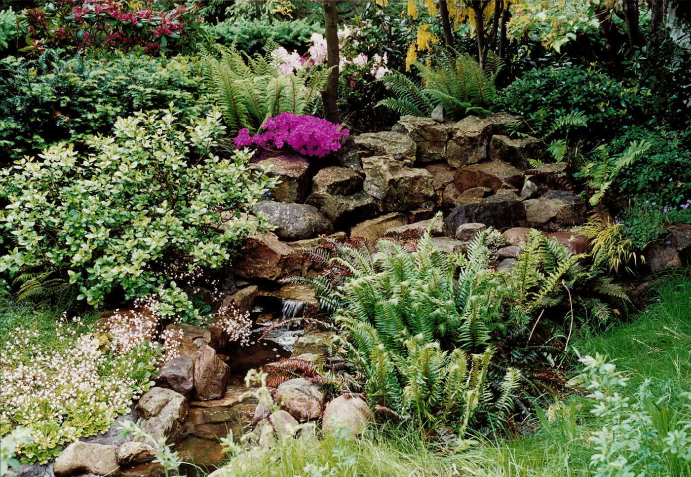 Gartengestaltung: Natürlich-ästhetisches Gartendesign