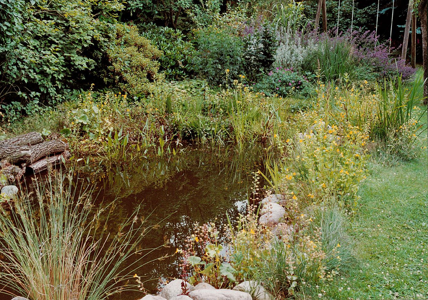Großartig Gartenteich Bildergalerie Sammlung Von Naturnaher Wasserlandschaft